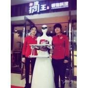 穿山甲女神  智能商业服务机器人 餐饮迎宾机器人