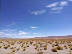 阿根廷最大300MW光伏电站采用华为智能光伏