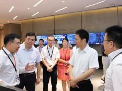杭州市常务副市长戴建平一行莅临大华股份参观调研